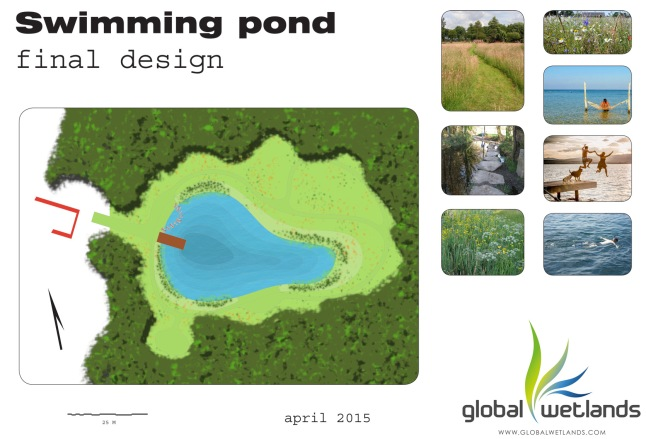 final_swimming_pond__verkleint